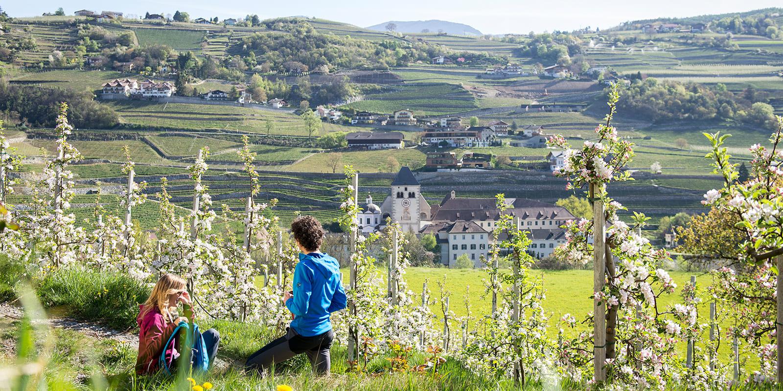 GERHARTS - Apfelblüte bestaunen
