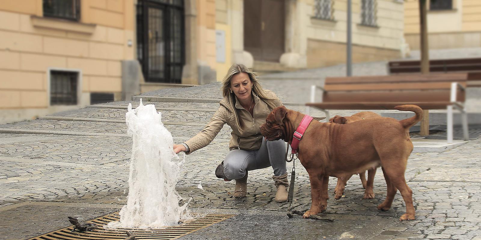 GERHARTS - Hunde in der Stadt
