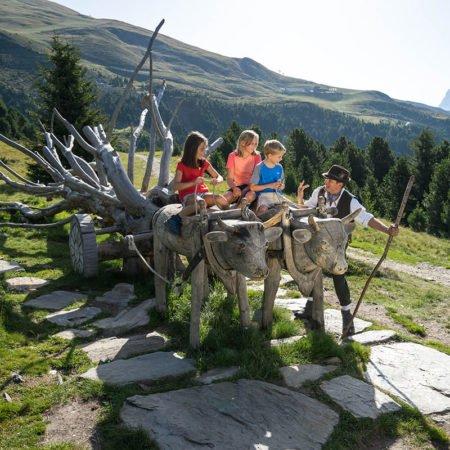 GERHARTS - Wanderspaß im Sommer auf dem Woody Walk - Ploseberg